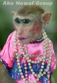 مارشال القرود