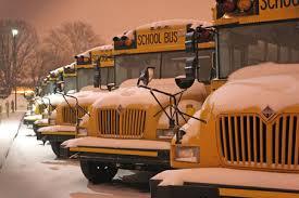 Michigan school districts,