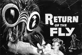 http://tbn0.google.com/images?q=tbn:2zDvVx9uB_Mt-M:http://i31.photobucket.com/albums/c374/zombietony/Return-Of-Fly_BWsmaller.jpg