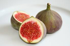 external image figs.jpg