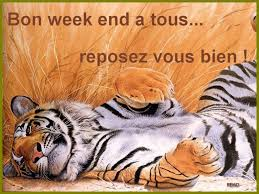 http://h0pe.centerblog.net/1728051-Bon-week-end-prolonge