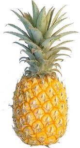 ملف كامل عن عمل المربى pineapple.jpg