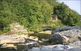 http://tbn0.google.com/images?q=tbn:7nbg_F5pWswLLM:http://fish-zlatograd.com/images/vyrbitsa_river-1.jpg