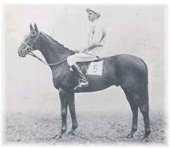 1938 Grand National Winner Battleship