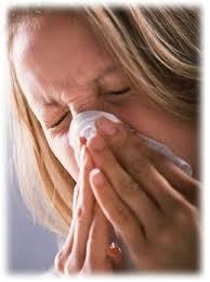 Hooikoorts / Allergie