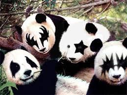 http://tbn0.google.com/images?q=tbn:COVfA-SyhTo3bM:http://caswell.blogspot.com/china/images/20040907.Panda.jpg
