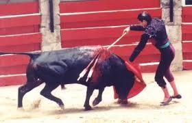 http://tbn0.google.com/images?q=tbn:DTllLp7wSqG9RM:http://www.animalsrighttolifewebsite.com/bullfighting12.jpg