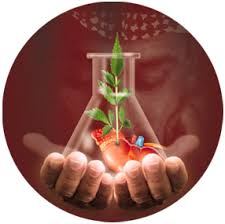 http://tbn0.google.com/images?q=tbn:DvHR-qC40oysPM:http://www.hmc.org.qa/hmc/health/24th/images/OR.jpg