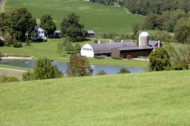 Farm, Pine Plains, NY