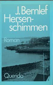 cover Hersenschimmen