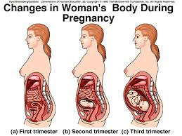 Physical Changes After Birth