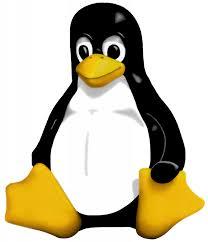 linux, tux, linus torvalds, линукс, линус торвальдс, пингвин, такс