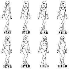 waist to hip ratio in male attraction