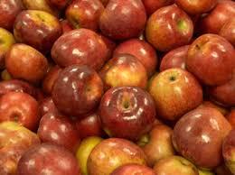 IMAGE(http://tbn0.google.com/images?q=tbn:LN5lgL6lZD2QxM:http://www.ritterfarms.com/images/apples.jpg)