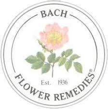 Bach Remedies