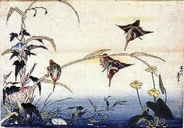 http://spectacle.berkeley.edu/~fiorillo/texts/topictexts/artist_varia_topics/hokusai3.html