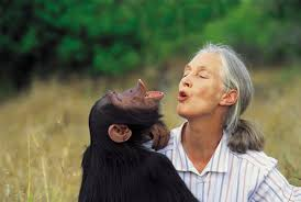 Ticketmaster Discount Code for Dr. Jane Goodall in Vancouver