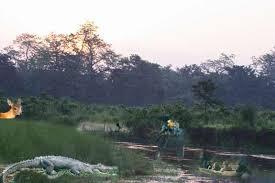 external image chitwan.jpg