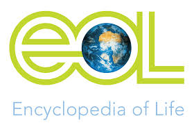 EOL - the Encyclopedia of Life