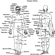Acupuncture Points Image