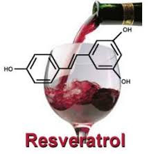 foods with resveratrol