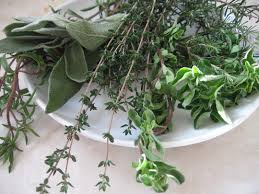 alternative health herbs remedies,