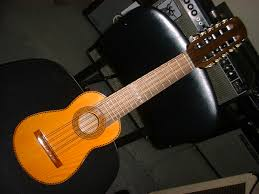 http://www.thinmanmusic.com/ukes_accessories_jawharps_drums.htm