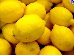 lemon22_a.jpg