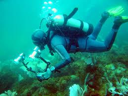 http://tbn0.google.com/images?q=tbn:bky4wP_Dzf_lsM:http://www.sun-and-surf-scuba-diving.com/images/scuba-diver-001.jpg