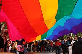 Pride%25202008%2520la%2520parade021