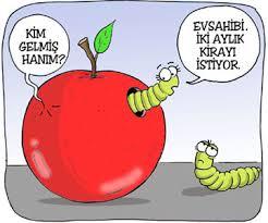 karikatur elma