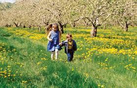 primavera en Galicia