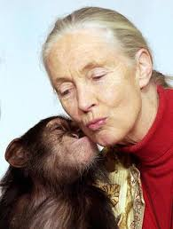 Jane Goodall And Non-Genetically Modified Foods And Organisms Month - Jane-Goodall