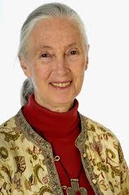Jane Goodall, PhD, DBE - jane_goodall