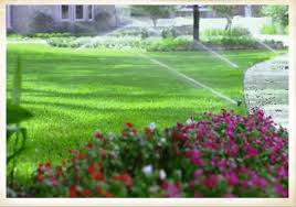 external image photo_irrigation3.jpg