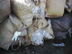 piles of plastic bags ...