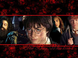 harry-potter-collage.jpg