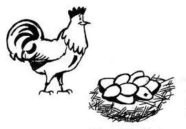 ביצים מהתרנגולת