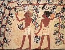 elaboracion_vino_egipto