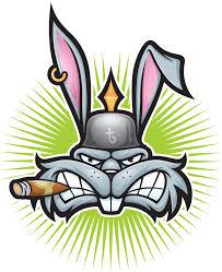Como entender el lenguaje de tu conejo