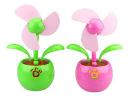 Osvježite ured cvijećem