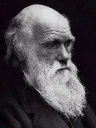 غلطه داروين