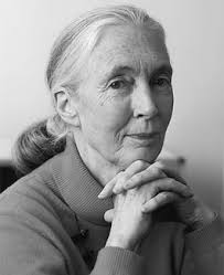 Jane Goodall ... - jane-goodall