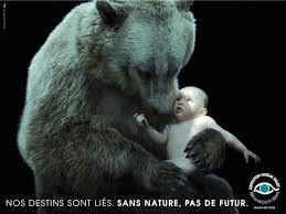 les ours ours