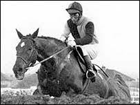 Rag Trade 1976 Grand National Winner