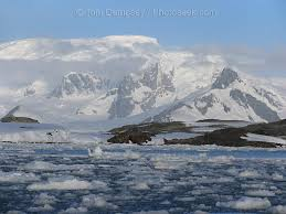 "http://www.photoseek.com/05ANT-20062-Antarctica.jpg"" cannot be displayed, because it contains errors."