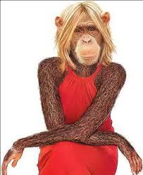 Scimmia Humanzeè