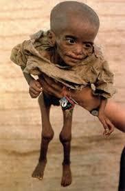 STOP al hambre