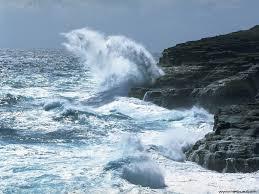 flores de bach y olas marinas